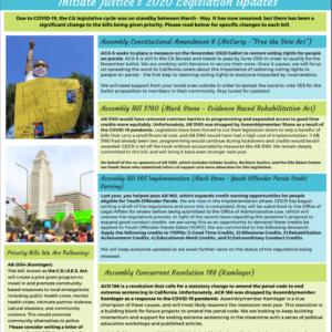 Newsletter #12 – Summer 2020